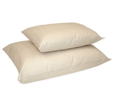 Organic Cotton/Kapok Pillow in Queen Size by Naturepedic