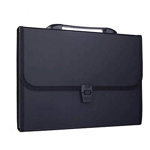 (DeLi 13-Pockets Poly Expanding File Folder with Portable-Handle, Letter)