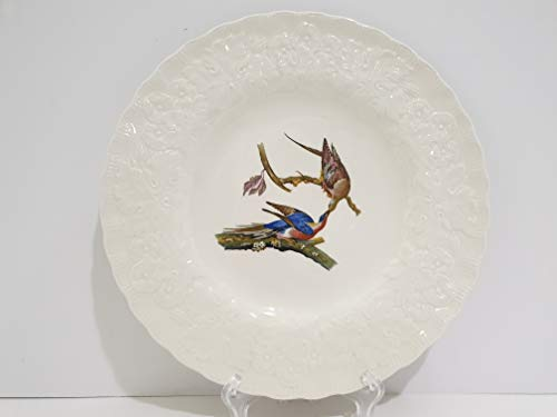 Alfred Meakin England Birds of America Passenger Pigeon Plate #62