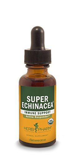 Herb Pharm Certified Organic Super Echinacea Extract for Active Immune System Support - 1 Ounce by Herb Pharm