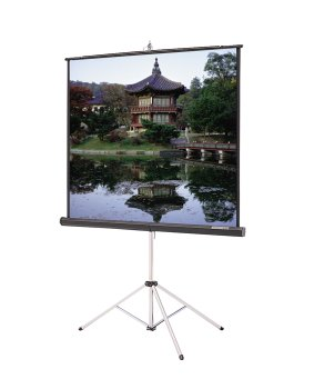 Carpeted Picture King Matte White Portable Projection Screen Viewing Area: 96'' H x 96'' W by Da-Lite