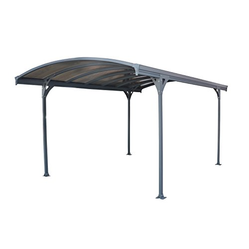 Palram Vitoria Carport & Patio Cover 16 x 10 x 8 (Patio Panels Aluminum Roofing)