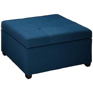 31AS9usmB7L._SS300_ Beach & Coastal Living Room Furniture
