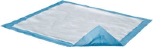 Light Sorb Attends Dri (Attends Healthcare Products Dri-Sorb Underpad 23 x 36, Light Absorbency, Latex-free, Disposable (Bag of 10 Each) by Attends Healthcare Products Corp)