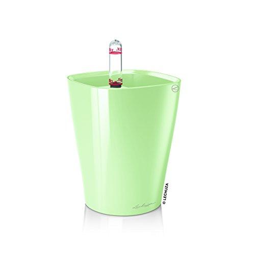 Lechuza Mini Deltini Mint Green High-gloss All-in-one Set