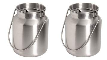 Lindy's Stainless Steel Gallon Jug, Silver (2-(Pack))