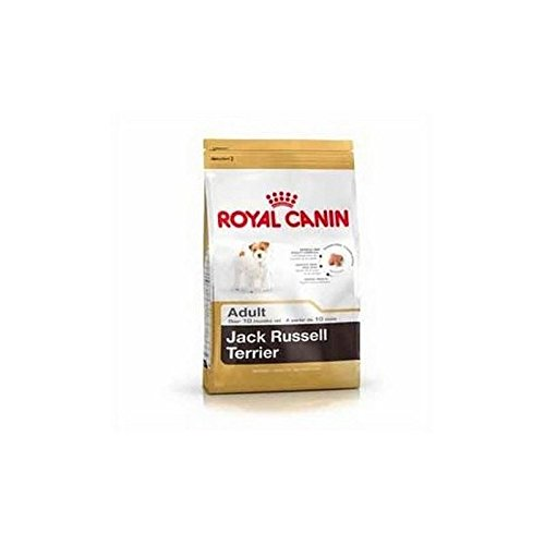 Royal Canin Jack Russell (3kg)