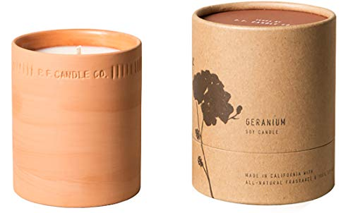 Terra by P.F. Candle Co. (Geranium 8 oz)