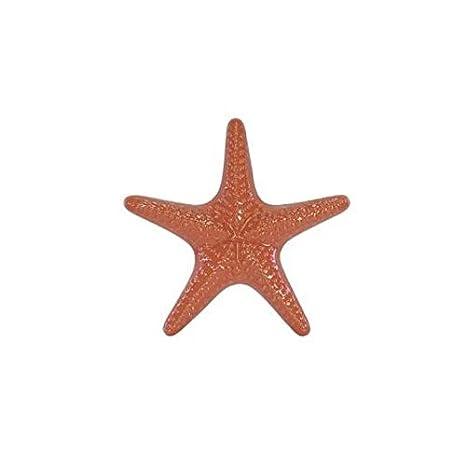 Escultura Estrela do Mar Decorativa em Cerâmica Coral 18cm - D&a
