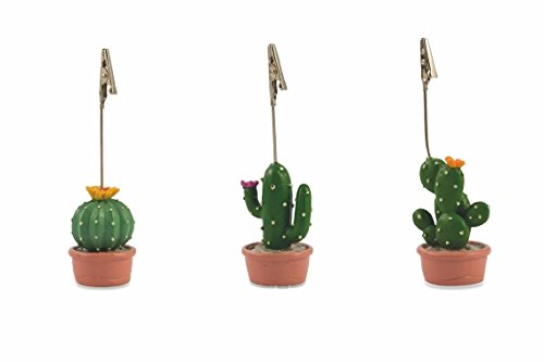 Villa dEste Home Tivoli Cactus - Juego de 3 marcadores de Mesa ...