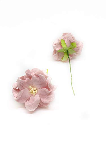 Savvi-Jewels-15-Blush-Pink-Mulberry-Paper-Flowers-with-Wire-Stems-Pink-Gardenia-Flowers-Mini-Paper-Flowers-Wedding-Decoration-Craft-Scrapbooking-Flowers-Bouquet-12-Pieces