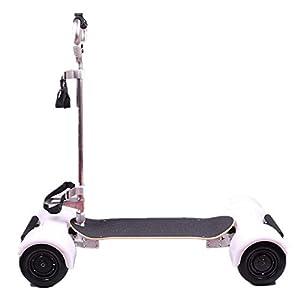 Push Pull Golf Cart