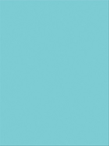 "Pacon SunWorks Construction Paper, 9"" x 12"", 100-Count, Sky Blue (7604)"