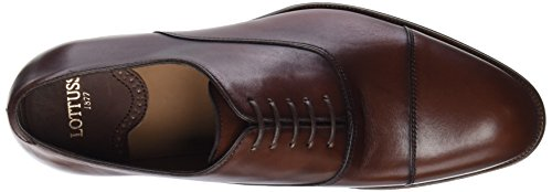 De Cordones Para Oxford L6965 000 ebony Marrón Hombre Zapatos Lottusse Tabac qSURfpx