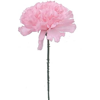 Amazon 100 carnations 5 pink artificial silk flower pick 100 carnations 5 pink artificial silk flower pick multiple colors available mightylinksfo