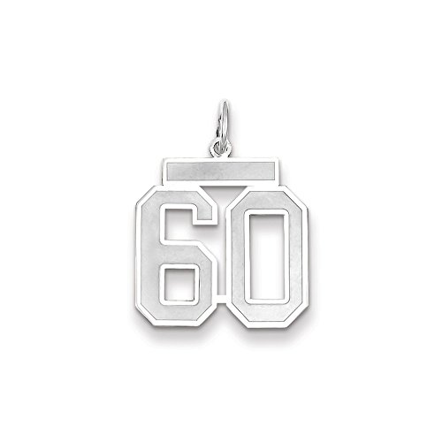 (Jewelry 14k WG Medium Satin Number 60 Charm)