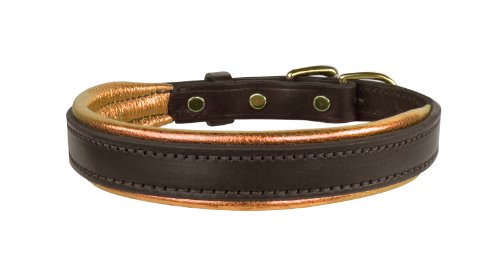 Perri's Leather Metallic Padded Leather Dog Collar, X-Large, Havana/Copper