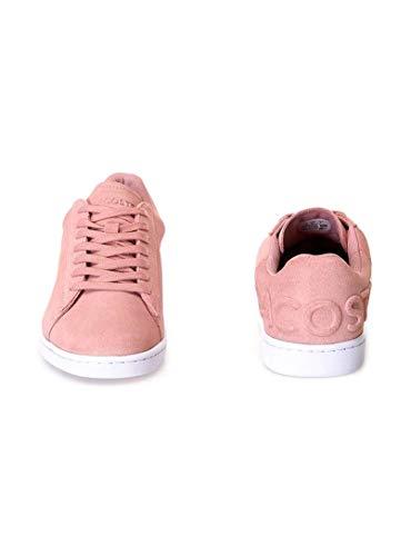 Lacoste Rosa Rosso Donna Evo Sneaker Carnaby rTPYxr