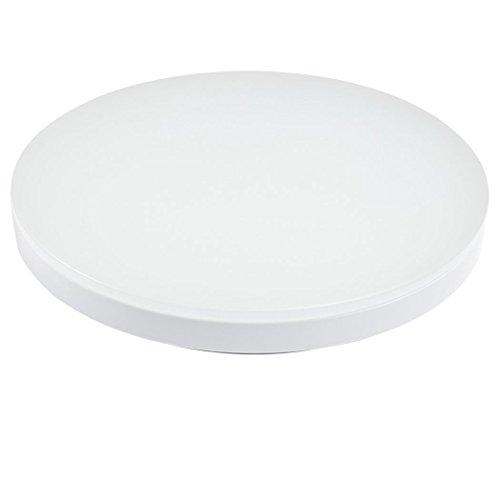 S&G 9.6-Inch LED Ceiling Lights 8w 3000k(Warm White) 650-750lm Flush Mount Bedroom Ceiling Lights Dining Room Lighting Fixtures