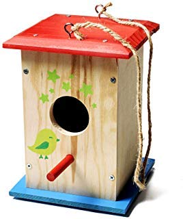 - Stanley Jr DIY Bird House Kit for Kids and Adults - Easy Assembly Paint-A-Birdhouse Kit - Wooden Birdhouse Kit - Paint & Brushes Included