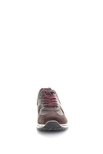 Igi&Co 6725200 Sneakers Uomo Caffè/T.Moro 41