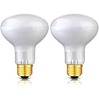 Amazon Com Omaykey 2 Pack 100w Basking Spot Heat Lamps