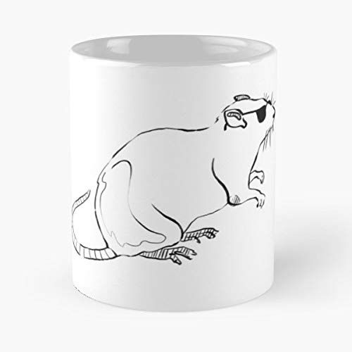 Rat Mouse Boston Allston - 11 Oz Coffee Mugs Unique Ceramic Novelty Cup, The Best Gift For Halloween. -