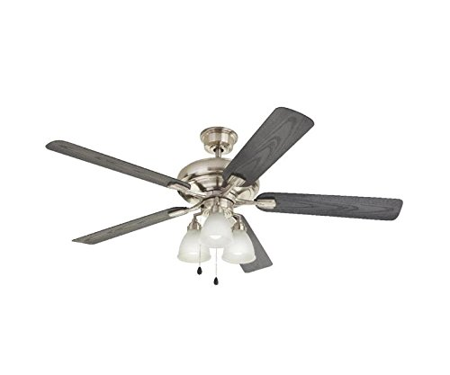 Home Decorators Collection Trentino II 60 in. Brushed Nickel Indoor/Outdoor Ceiling Fan