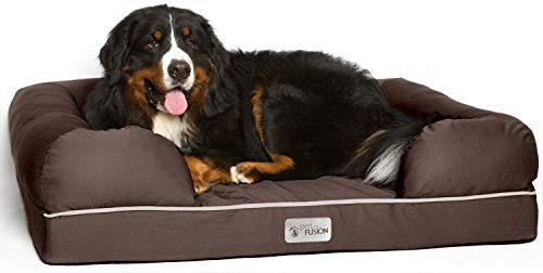 PetFusion Extra Large Dog Bed w/Solid 4″ Memory Foam, Waterproof Liner, YKK Premium Zippers. [Chocolate Brown, 44x34x10 – Sized for XL Dogs