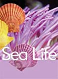Sea Life, Katy Pike and Garda Turner, 0791072886