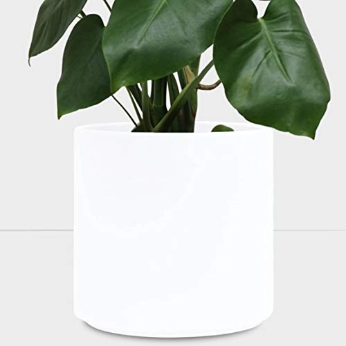 PEACH & PEBBLE Indoor Plant Pot (10.5, 8.5, 6.5) - White Terracotta Planter, Perfect for House Plants - Available in White, Black, Bronze, and Blush