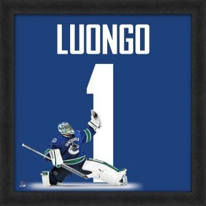Vancouver Canucks Roberto Luongo Framed - Biggsports Roberto Luongo Vancouver Canucks 20x20 Framed Uniframe Jersey Photo