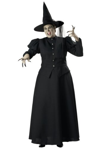 Plus Size Black Witch Costume - 2X -