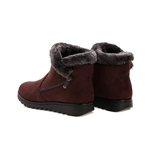 Hiver antidérapant Neige de Femmes Bottes Chaussures imperméable Haut Chaude à Doublure Cheville la juqilu Marron Confortables Chaussures Bottes Bottes Talon Bas Fg5wBz