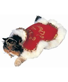 Pet Costume - Queen Dog or Cat Costume Medium Dog (Queen Cat Costume)