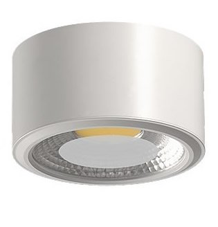 Acb Daviú - Plafón de techo superficie 1 Luz Led 10 Watios 3200K. Color Blanco.