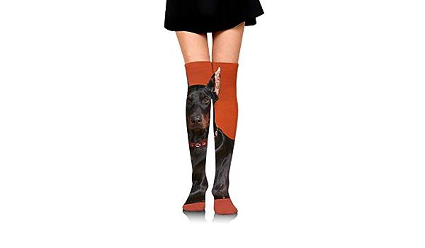Dress Sock Sushi Daschund Dog High Knee Hose Novelty Hold-Up Stockings For Yoga
