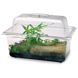 Nasco SB15079 A Flex Tank and Domed Cover with Dial Ventilator, 1-1/2 gal - Plastic Terrarium