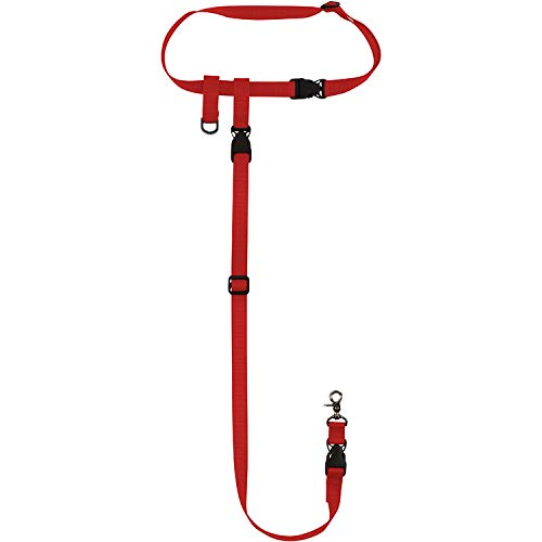 (The Buddy System Made in USA Adjustable Hands Free Dog Leash, Great for Running, Regular Dog System, Regular, Red)