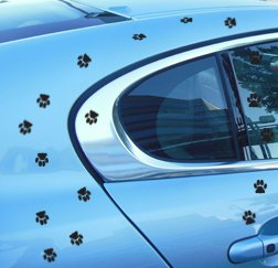 AmiArt CAT Sticker Decal- 18 Black PAW Prints- Size of Cat Foot Print-  Indoor/Outdoor Vinyl Pet Bumper Window Sticker for Car Truck Wall Laptop  Mug