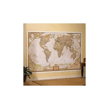 Amazon mural world map map type executive wall murals mural world map map type executive gumiabroncs Gallery