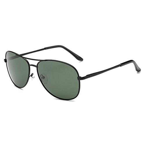 HC-Handel Corne de lunettes de lunettes de lunettes de nerd Transparent ou comme Lunettes de soleil Wayfarer de différentes couleurs. 11724 aKRSu