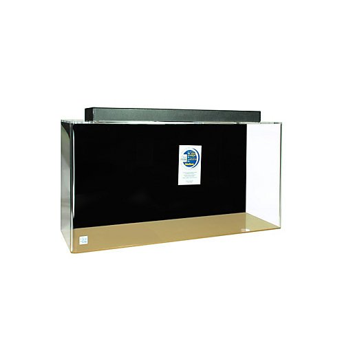 Acrylic Rectangle Aquarium 55 Gallon Black by Advance Aqua Tanks