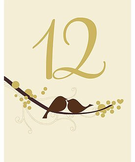 Love Bird Table Number Card