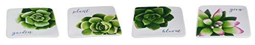 Succulent Floral Green 5 x 5 Dolomite Ceramic Tidbit Candy Dishes Set of 4 (Tidbit Dish Garden)