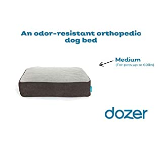 "The Dozer Pet Bed | Odor-resistant orthopedic dog bed | Memory foam for joint relief and pet comfort. Machine wash, plush fabric | Medium - 28""x36""x6"" (up to 60 lbs) 