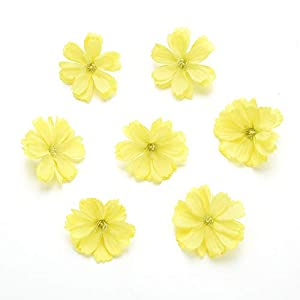 Fake flower heads in bulk wholesale for Crafts Artificial Silk Flowers Head Peony Daisy Decor DIY Flower Decoration for Home Wedding Party Car Corsage Decoration Fake Flowers 50PCS 4cm (Colorful) 5