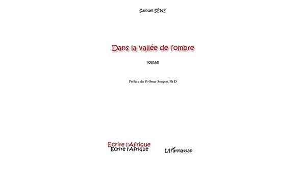 Dans la vallée de lombre: Roman (Écrire lAfrique) (French Edition)