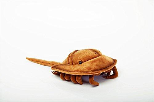 (Horseshoe Crab 9