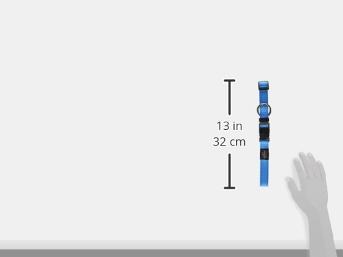 ROGZ Reflective for Adjustable Turquoise